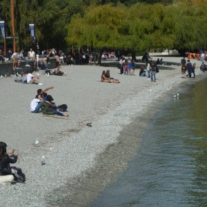 Queenstown Lakeside
